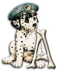 Honden Alfabetten