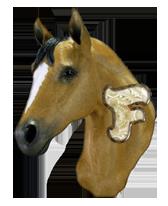 Paarden Alfabetten