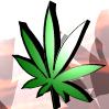 Avatars Weed