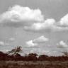 Avatars Wolken