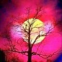 Avatars zonsondergang