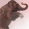 Dieren Olifant Avatars