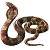 Dieren Slangen Avatars