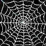 Dieren Spinnen Avatars