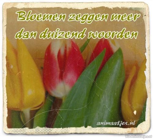 Facebook plaatjes Bloemen zeggen meer dan duizend woorden