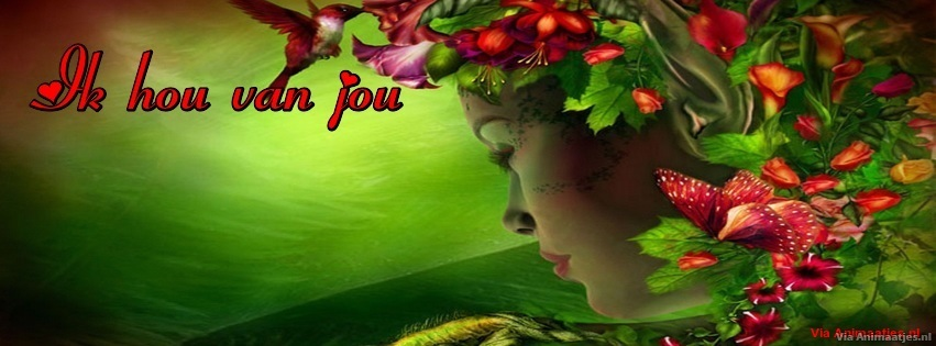 Facebook plaatjes Facebook covers
