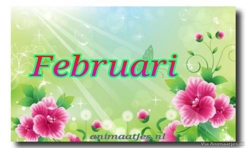 Februari Facebook plaatjes