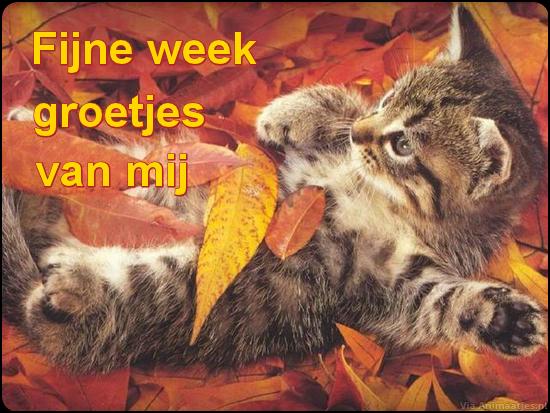 animaatjes-fijne-week-7980682.png