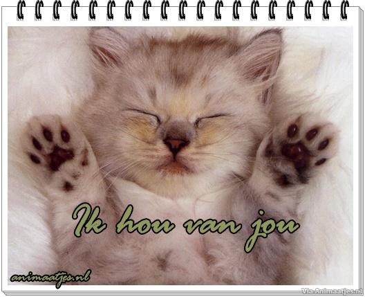 Verwonderend Ik Hou Van Jou Facebook Plaatje » Animaatjes.nl KK-84