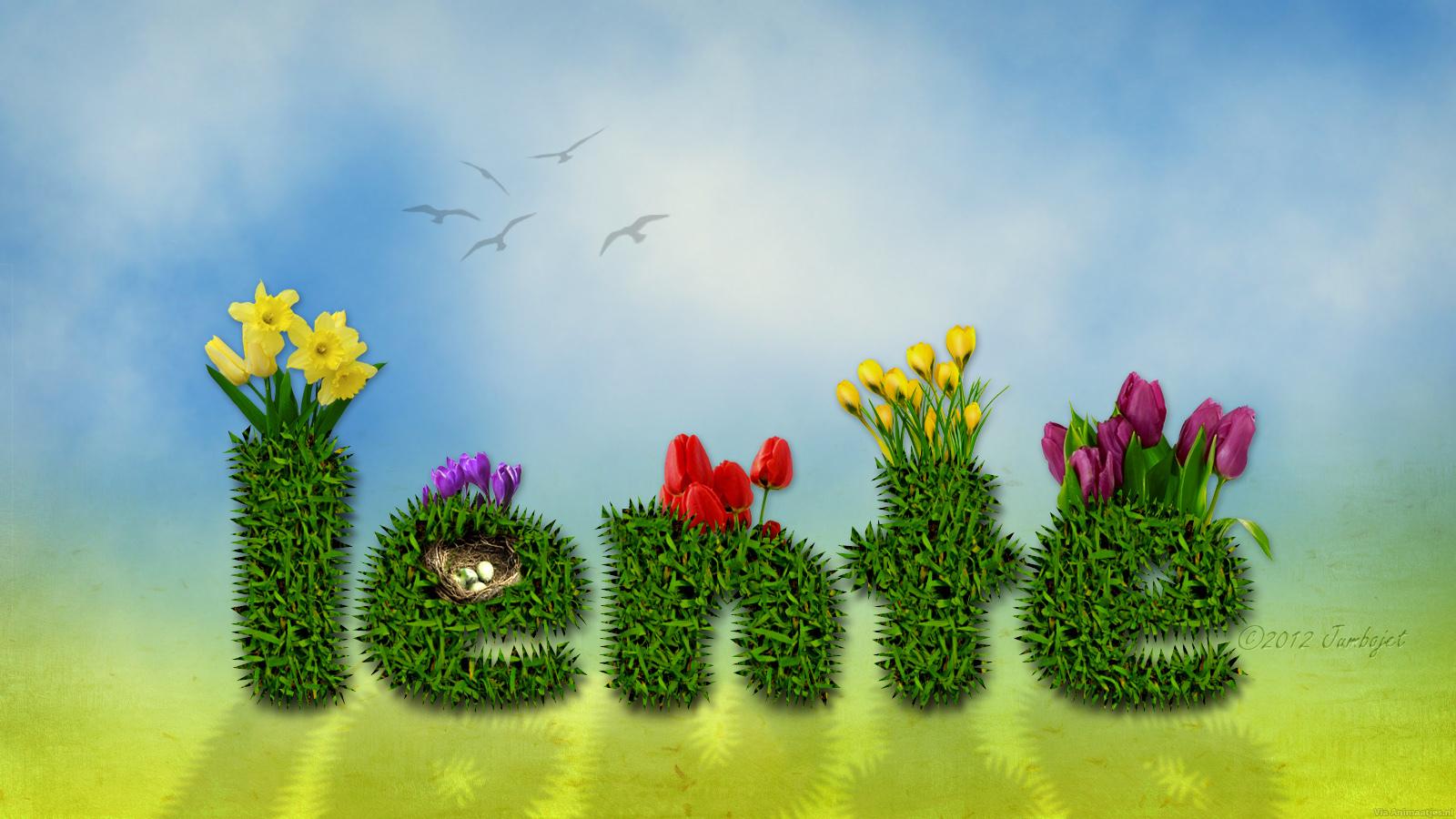 Afbeeldingsresultaat voor afbeelding lente