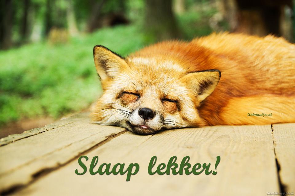 Slaap lekker Facebook plaatjes