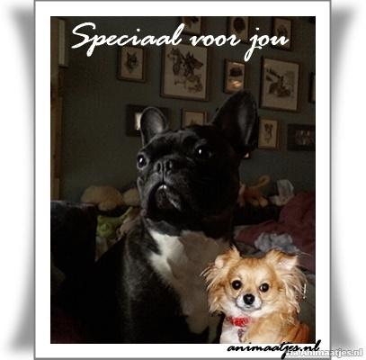 Facebook plaatjes Speciaal voor jou