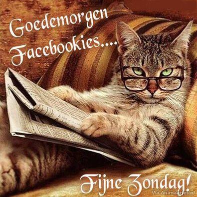 zondag Facebook plaatjes