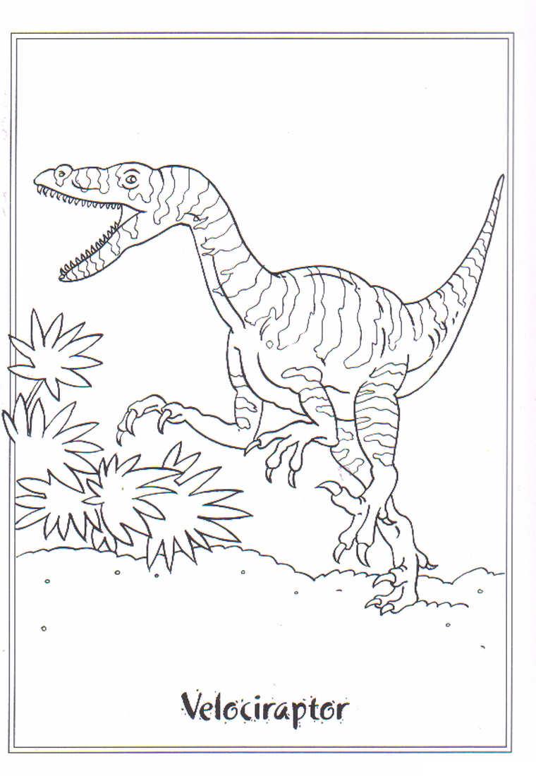 Dinosaurus Kleurplaten Dieren kleurplaten