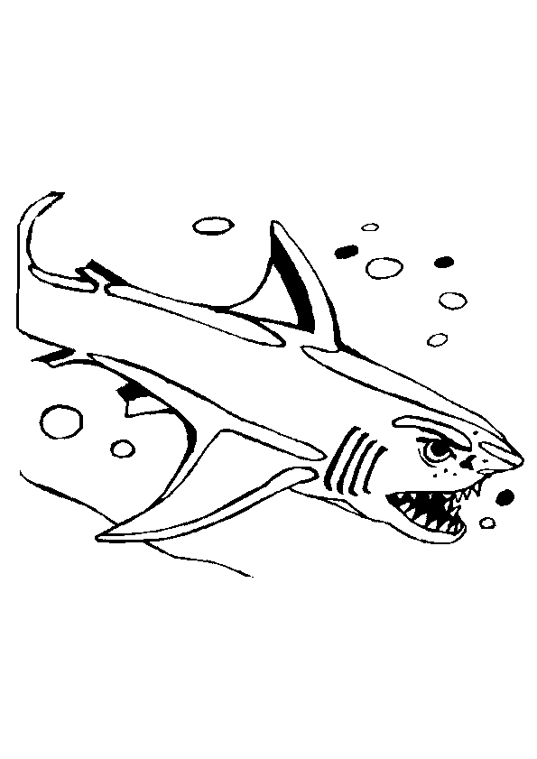 Haaien Kleurplaten 187 Animaatjes Nl