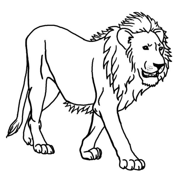 kleurplaten van leeuw