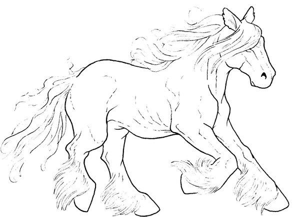 paarden kleurplaten tinker