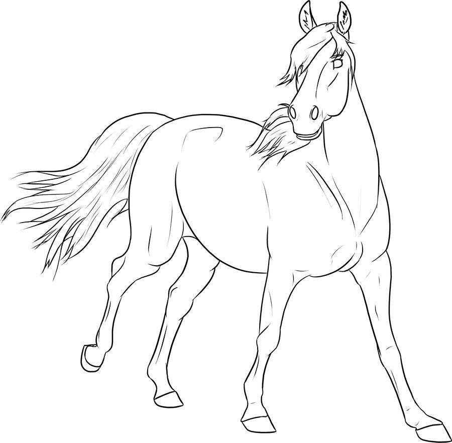 Kleurplaten Dieren In Het Wild Paarden Kleurplaat Dieren Kleurplaat 187 Animaatjes Nl
