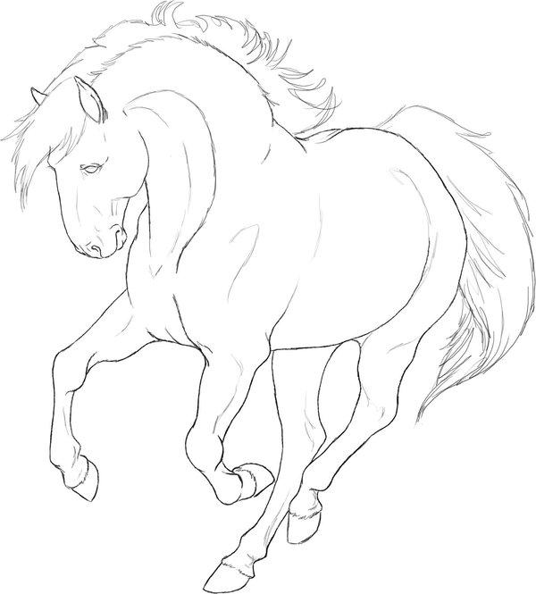 Kleurplaten Dieren Paard.Paarden Kleurplaten