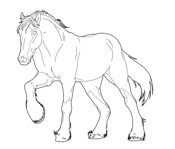 Paarden Kleurplaten Dieren Kleurplaten 187 Animaatjes Nl