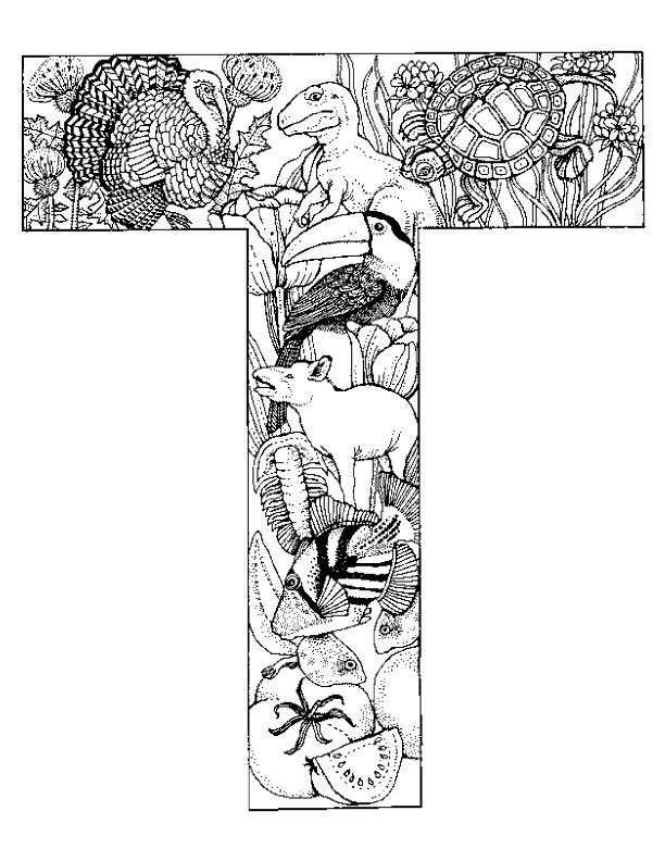 Kleurplaten Van Alfabet Dieren.Kleurplaat Alfabet Dieren Animaatjes Nl
