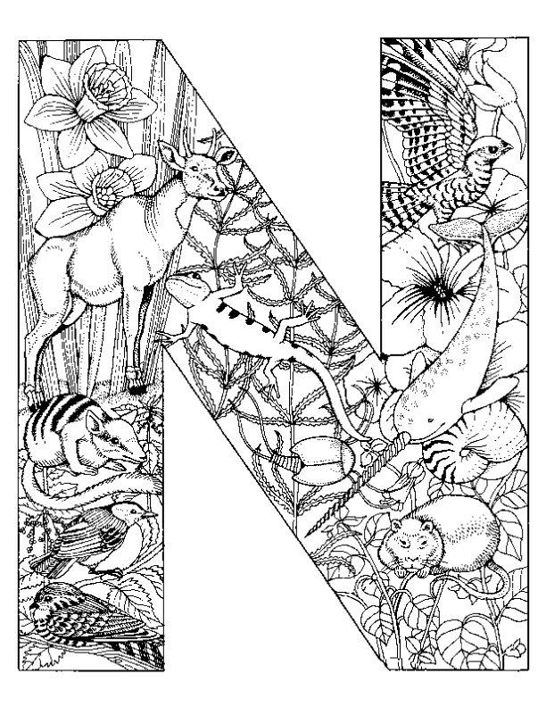 kleurplaten alfabet dieren