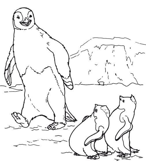 pinguin kleurplaat » animaatjesnl