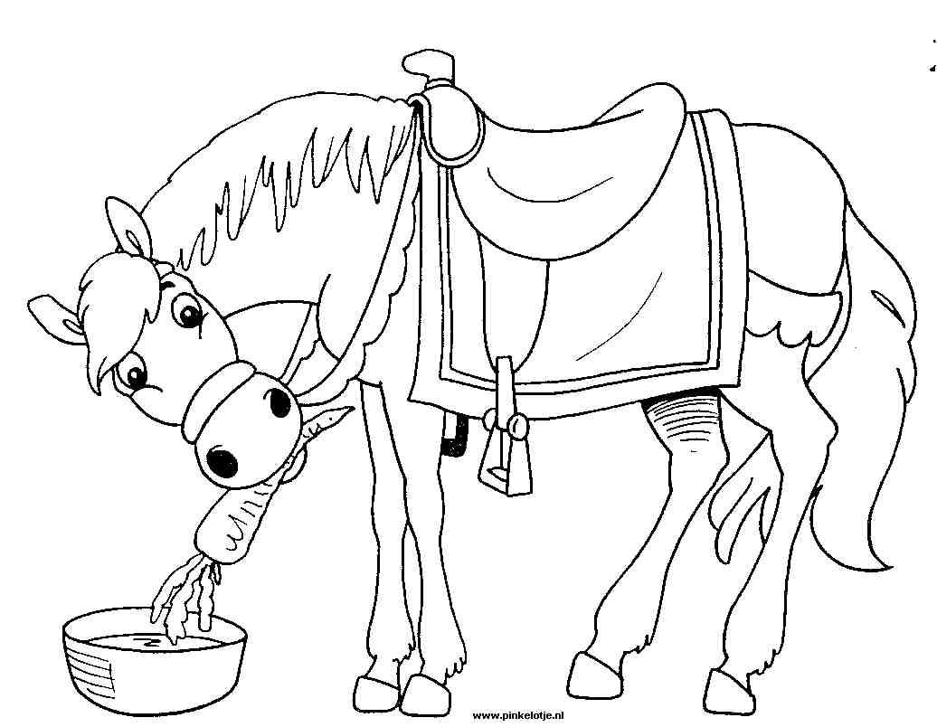 Kleurplaten Van Paard.Paard Van Sinterklaas Kleurplaten Animaatjes Nl