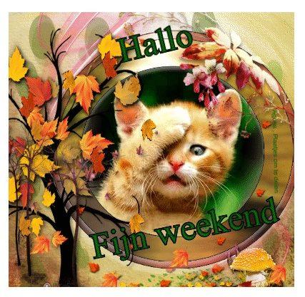 Fijn Weekend Weekend Facebook Plaatjes 187 Animaatjes Nl