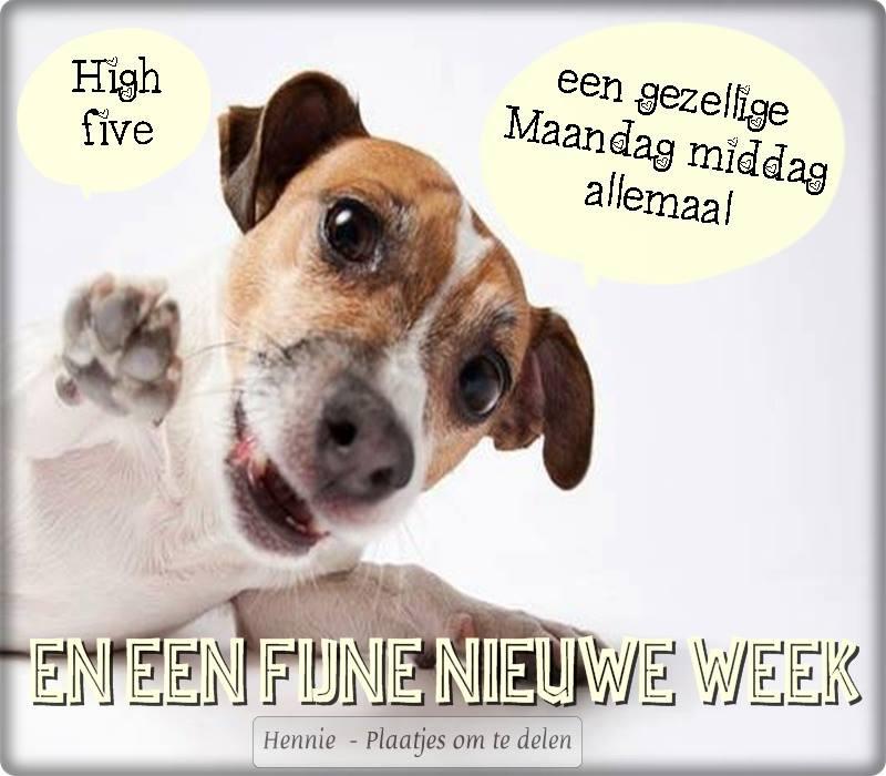 maandag Facebook plaatjes gezellige maandag middag allemaal en een fijne nieuwe week