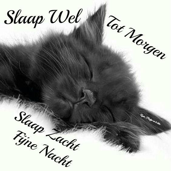 Slaap wel Facebook plaatjes slaap wel slaap zacht tot morgen fijne nacht