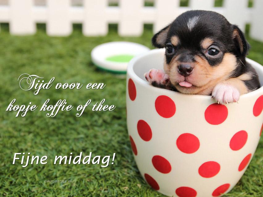 Fijne middag Facebook plaatjes Tijd voor een kopje koffie of thee