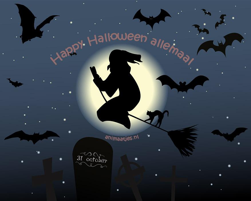 Halloween Vleermuizen Facebook plaatjes heks happy halloween allemaal bezem