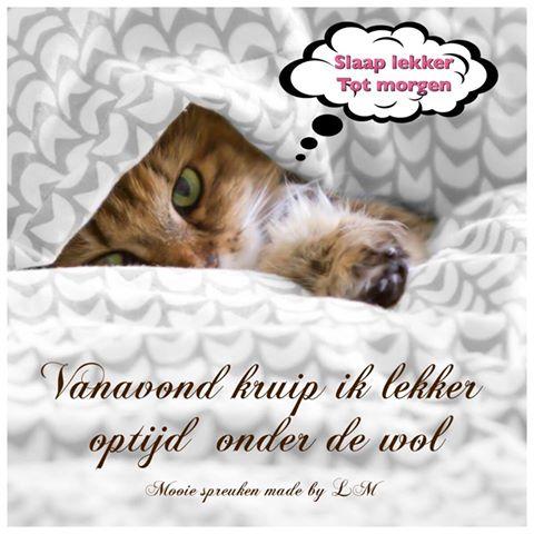 Slaap lekker Facebook plaatjes vanavond kruip ik lekker optijd onder de wol