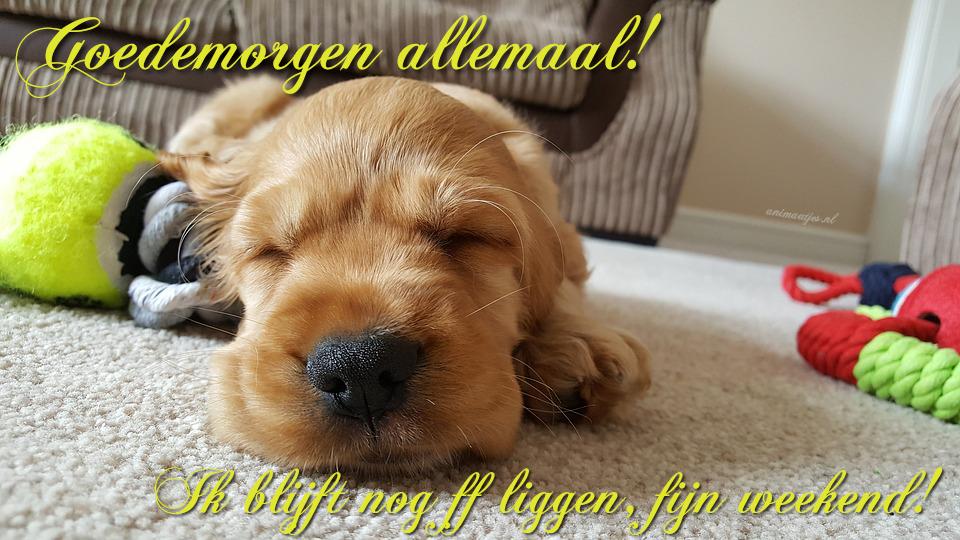 Fijn Weekend Weekend Facebook Plaatje Ik Blijf Nog Ff