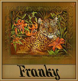 Naamanimaties Franky