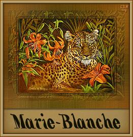Naamanimaties Marie-Blanche