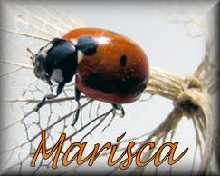 Naamanimaties Marisca
