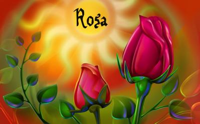 Naamanimaties Rosa