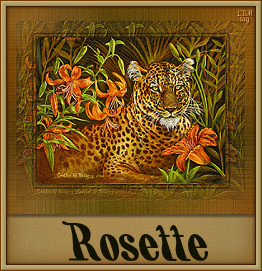 Naamanimaties Rosette