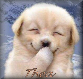 Naamanimaties Thea
