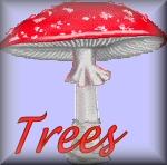 Naamanimaties Trees