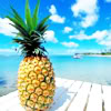 Ananas Plaatjes