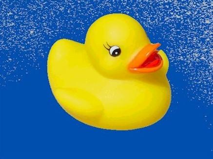 plaatje badeendjes 187 animaatjes nl