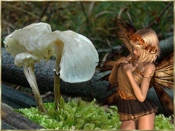 An den Beitrag angehängtes Bild: http://www.animaatjes.nl/plaatjes/e/elfjes/bild_07.jpg