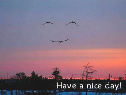 Have_a_nice_day plaatjes
