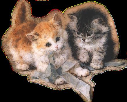katten met strik