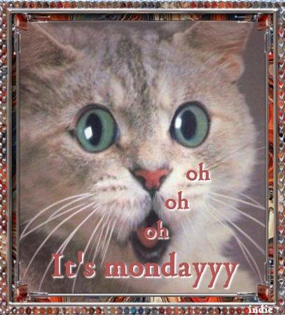 Plaatjes maandag