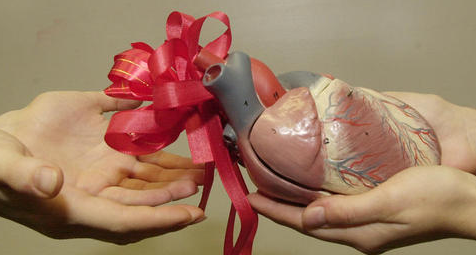 organen en hand