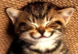 Smiley Plaatjes